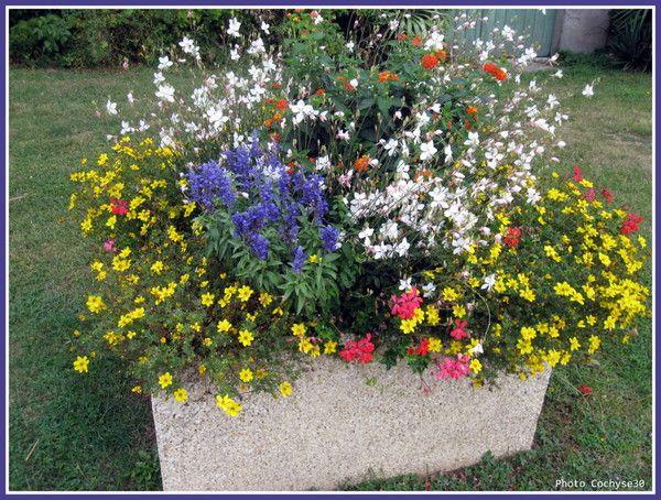 Vasque fleurs