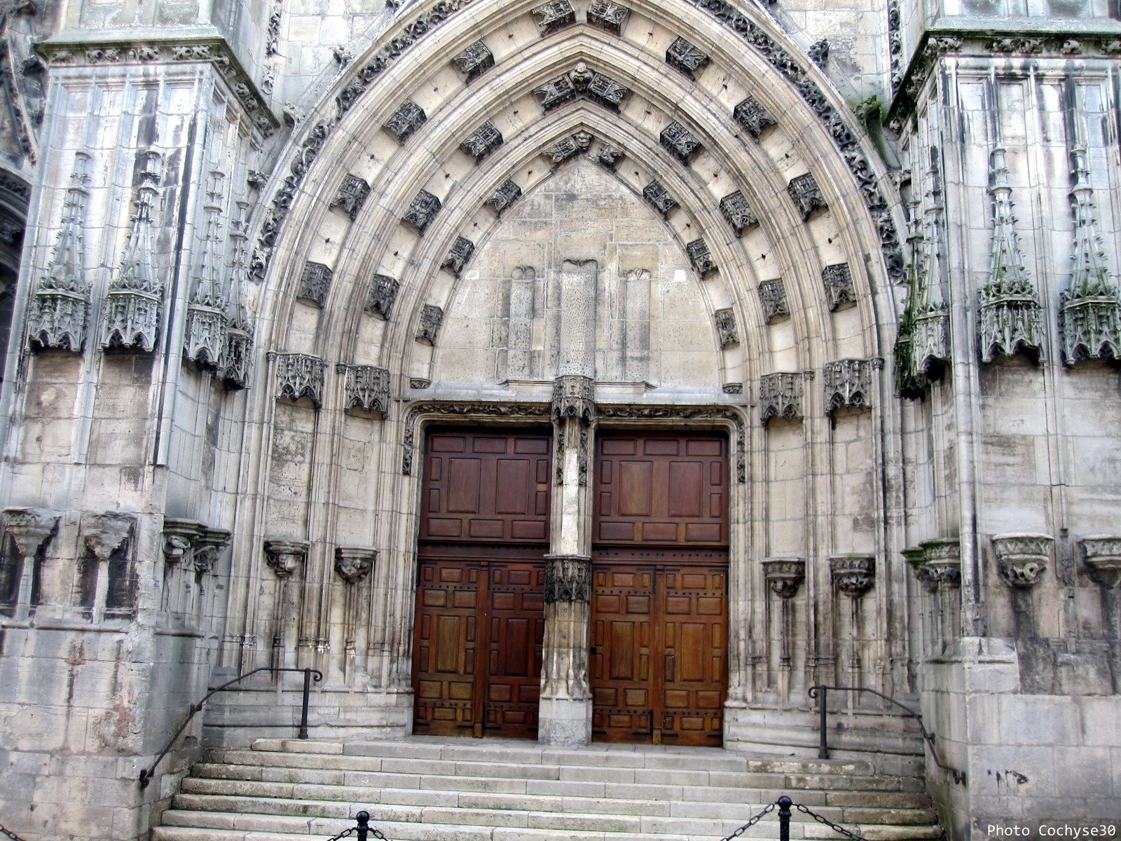 Saint nicolas de port - Clinique veterinaire saint nicolas de port ...